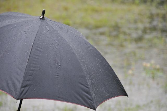 梅雨時のカビ対策はこれでOK!部屋のジメジメを撃退せよ