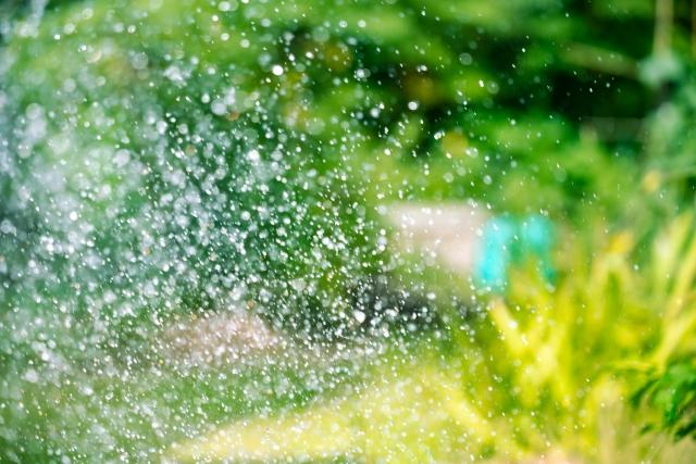 エコな暑さ対策!打ち水の意味や歴史、効果的な時間まで詳しく解説